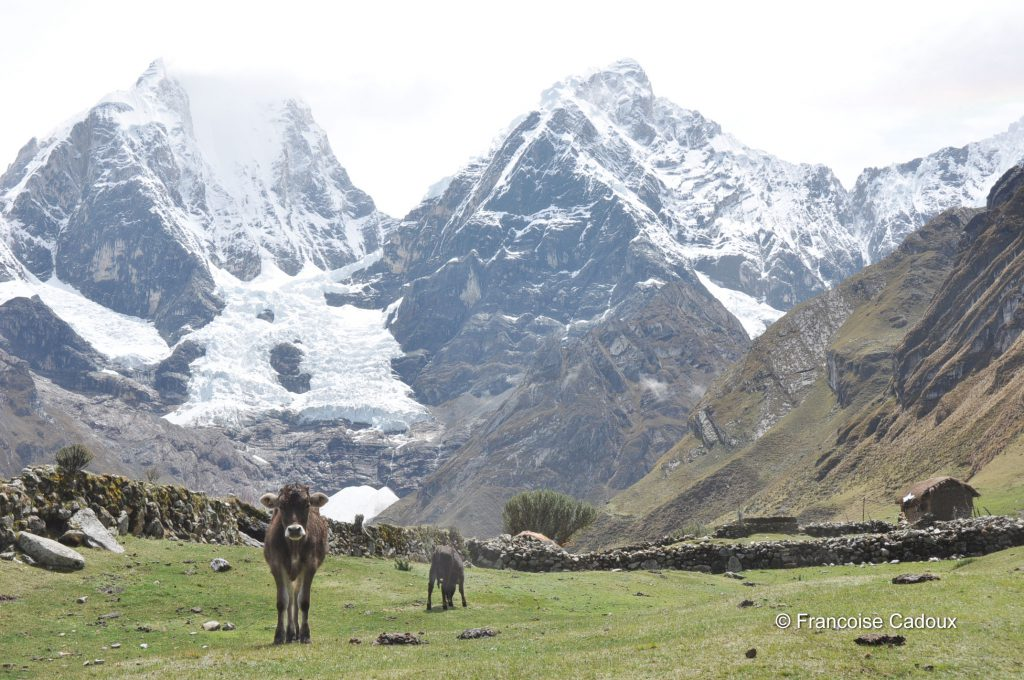 Mt Siula Grande 6344m, Huayhuash, Pérou